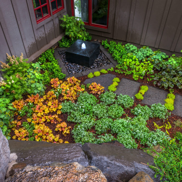 incline-village-landscaping-plant