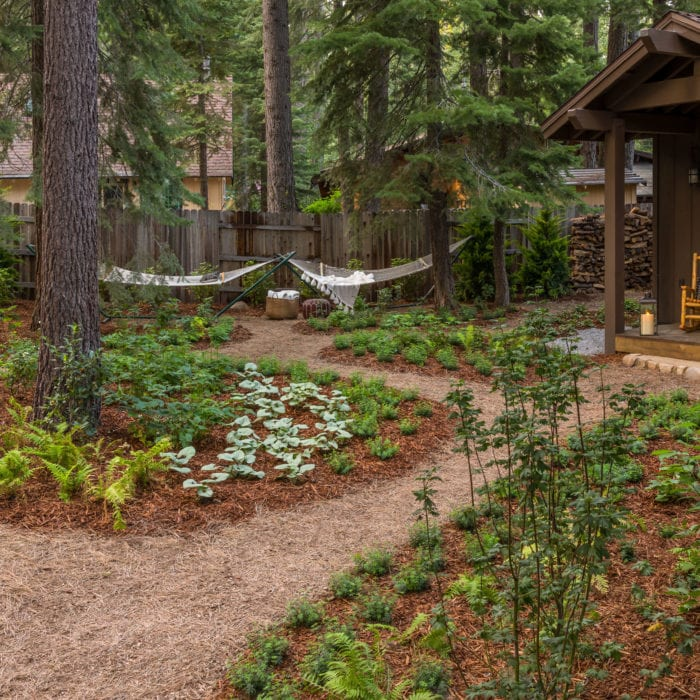 truckee-landscaping
